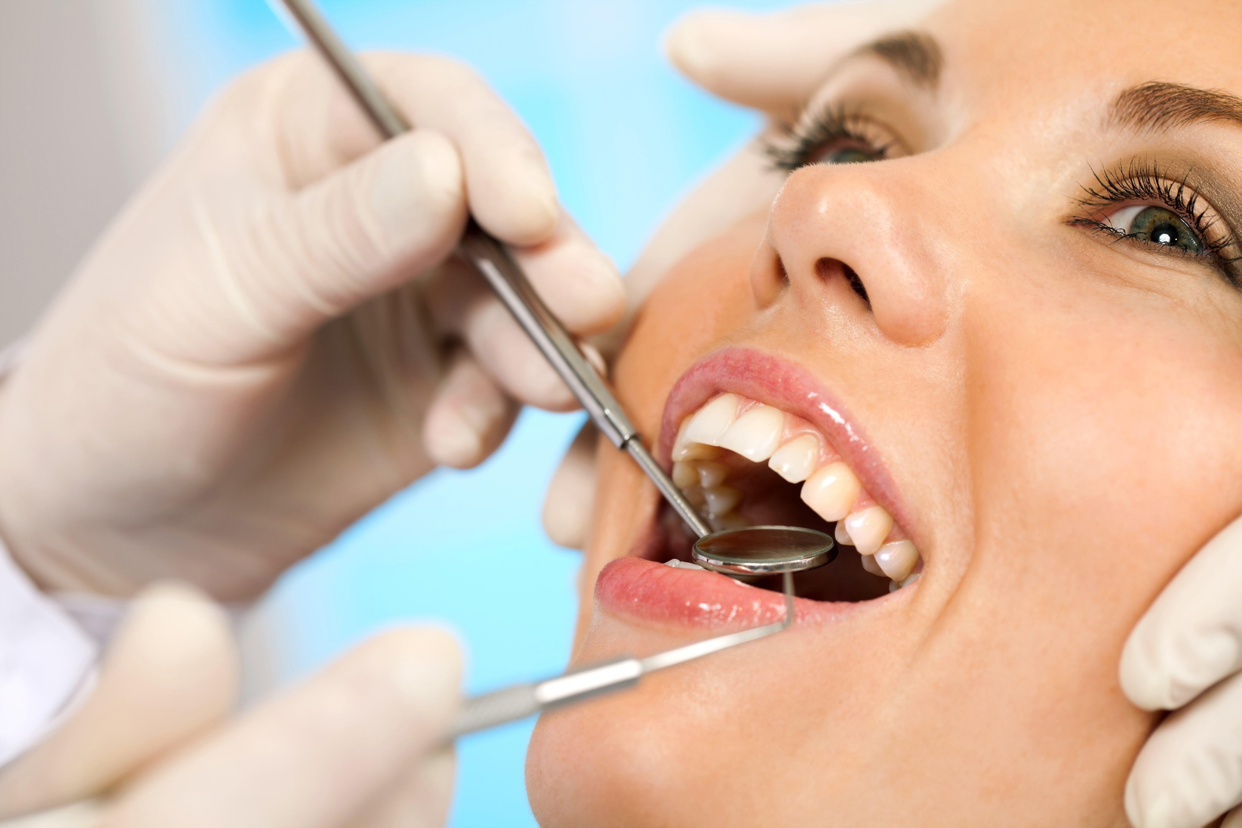 Dental (13)