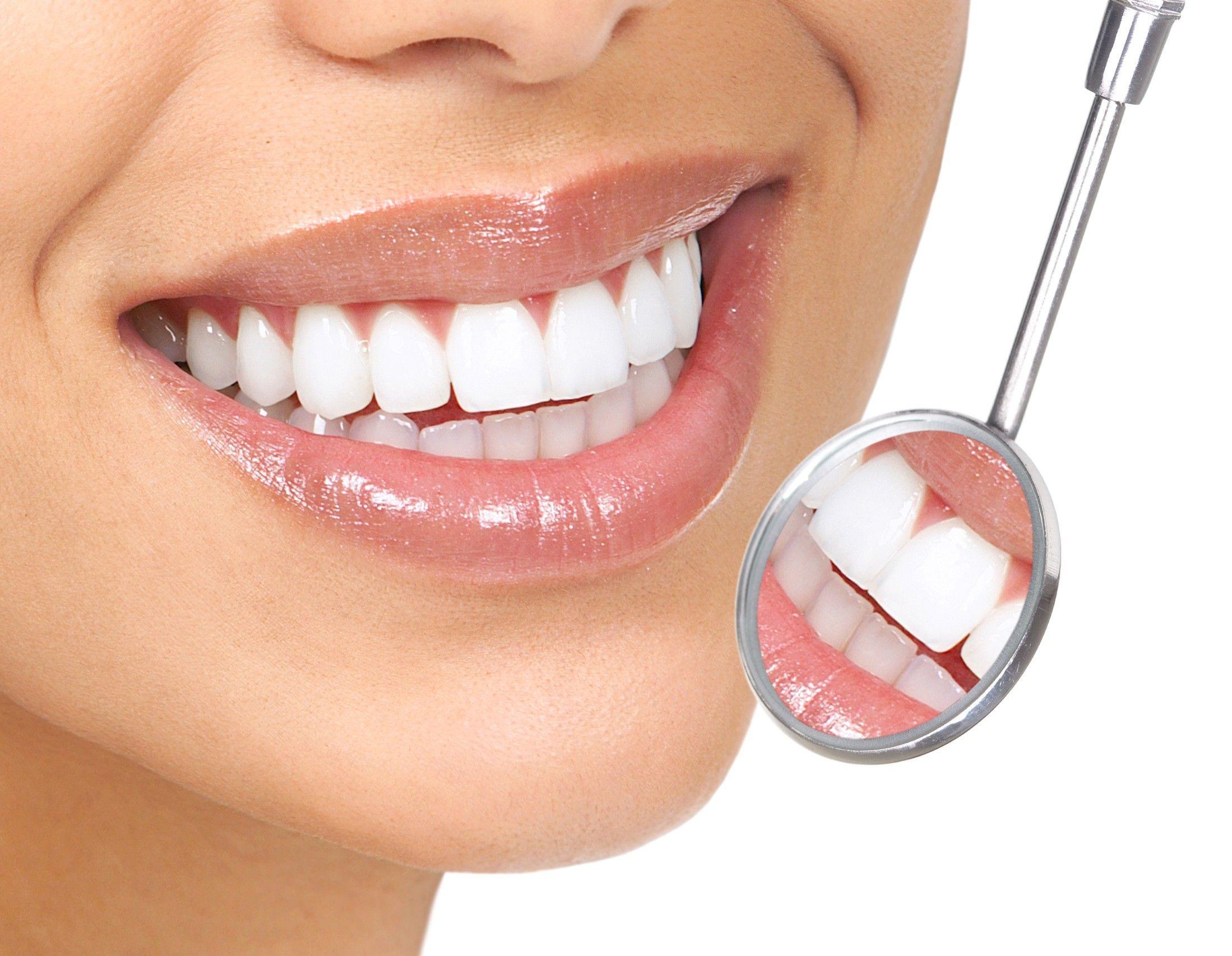 Dental (15)